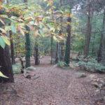 Ambarrow Hill