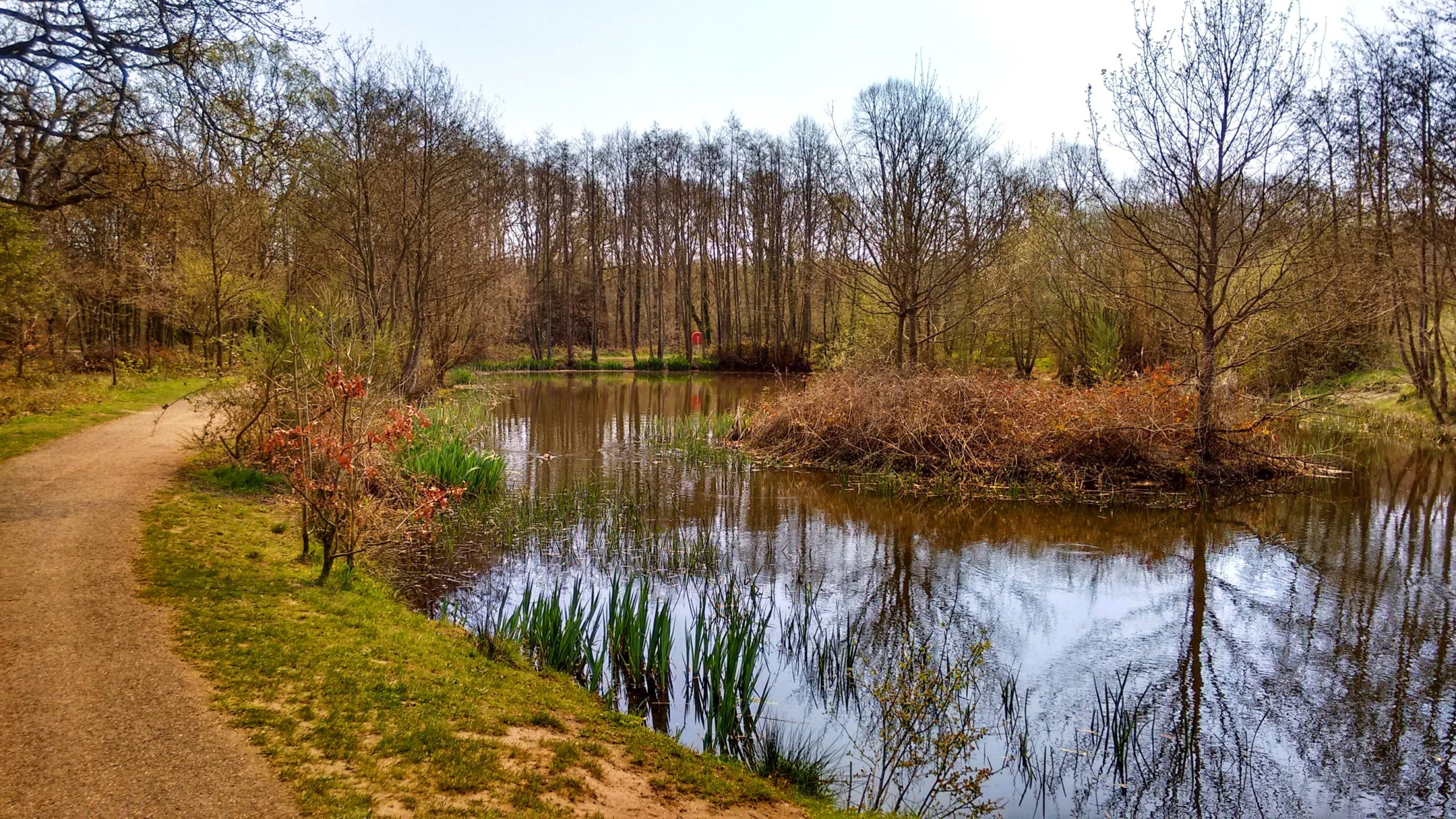Brookwood Country Park