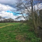 Chobham Water Meadows