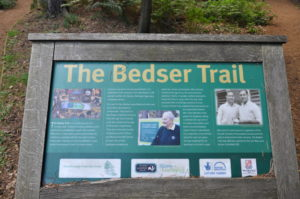The Bedser Trail