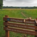 Effingham Common