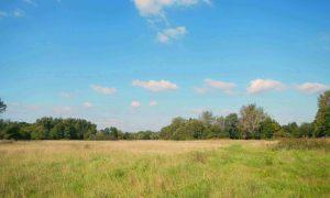Hawley Meadows and Blackwater Park