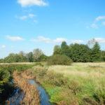 Hawley Meadows
