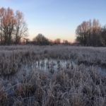 Heather Farm on a frosty morning taken by Senior Warden Annie