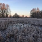 Heather Farm on a frosty morning taken by Senior Warden Annie