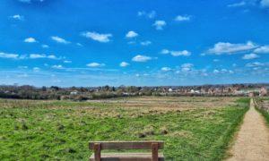 May's Farm Meadows