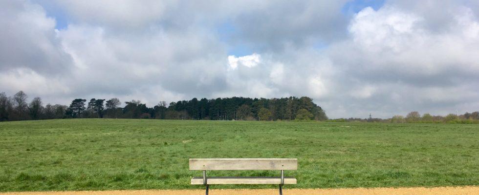 Peacock Meadows
