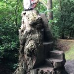 Lily Hill Park's story-telling throne