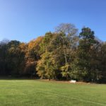 Queen's Wood at Ether Hill by Mike Taylor