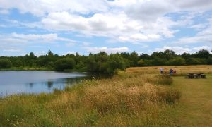 Riverside Nature Reserve