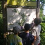 Family looking at a map board at Wellesley Woodlands