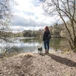 Chalk Farm Lake, Wellesley Woodlands (c) Andy McKenna