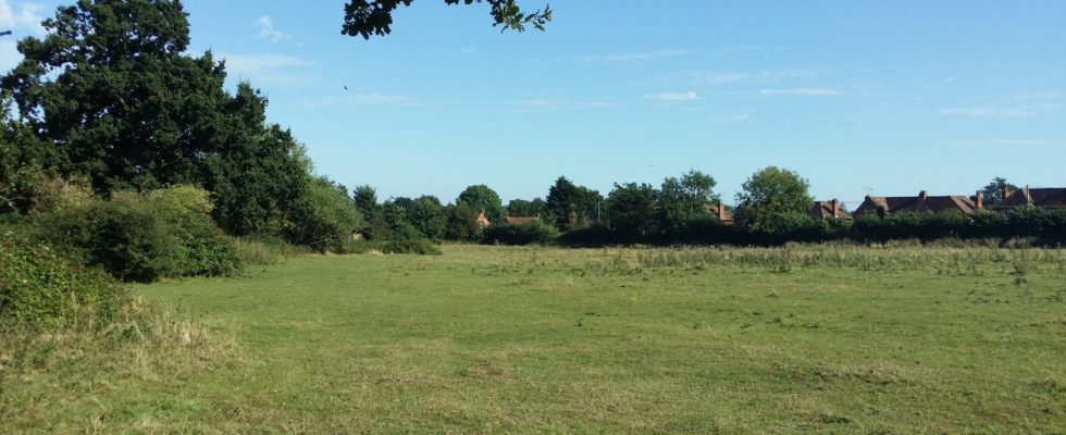 Clares Green Field