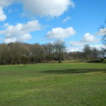 Open space at Wellesley Woodlands