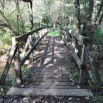 Bridge across the Hoe Stream into White Rose Lane Nature Reserve
