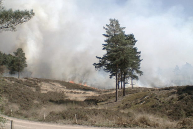 Fire at Pirbright Ranges April 2015. Warden Mike Taylor.