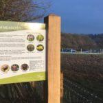 Broadmoor Farm Meadows contributed by Warden Trudi