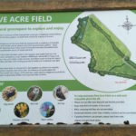 Five Acre Field