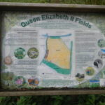 Queen Elizabeth II Fields