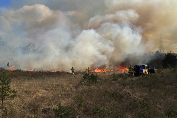 Fire at Chobham Common National Nature Reserve