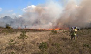 The fire at Chobham Common
