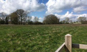 Five Acre Field
