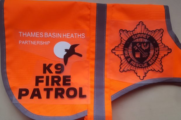 Mock-up of jacket for the K9 Fire Patrol