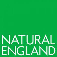 Natural Engalnd logo