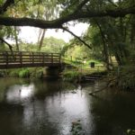 Bridge at Shepherd Meadows captured by Warden Flo