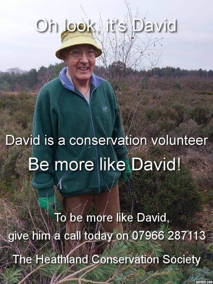 HCS Be more like David!