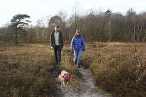Responsible visitors to the Thames Basin Heaths Special Protection Area