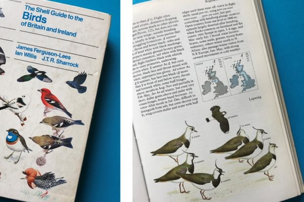 Shell Guide to the Birds of Britain and Ireland [First published in 1983]