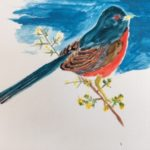 Bold watercolour of a Dartford warbler on a branch.