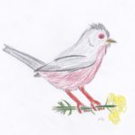Colourful crayon drawing by Michael.