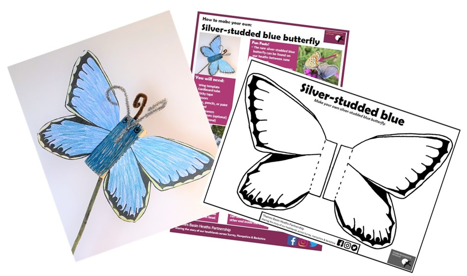 Make your own butterfly activity