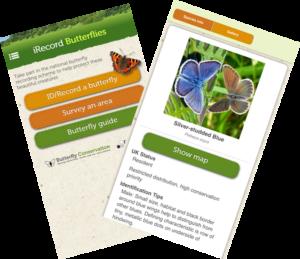IRecord Butterflies App screenshots