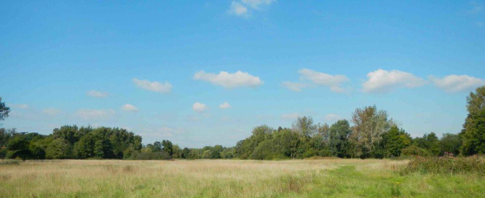 Hawley Meadows & Blackwater Park