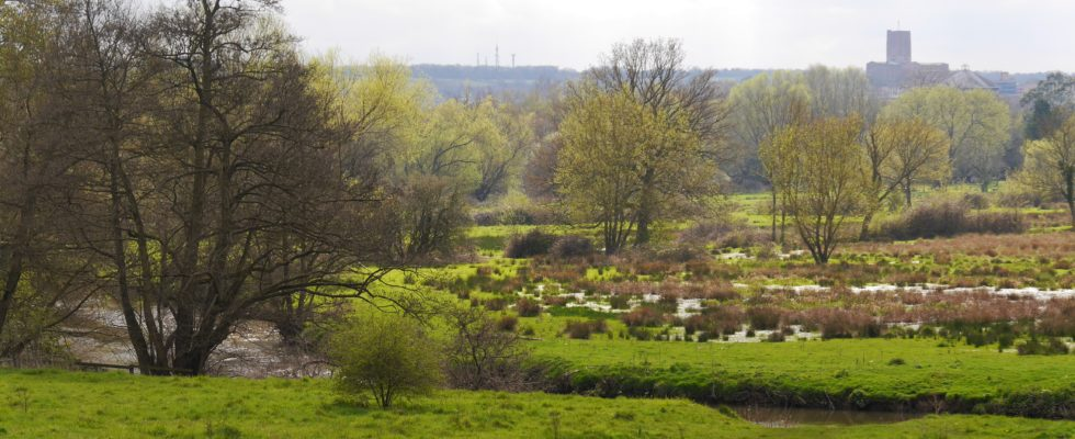 Riverside Nature Reserve