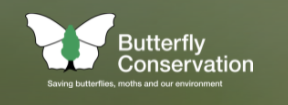Link to Butterfly Conservation website