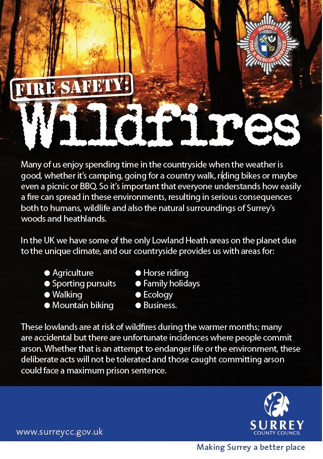 Wildfire leaflet cover image