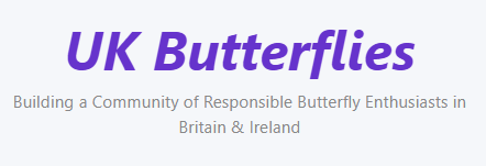 Link to UK Butterflies website