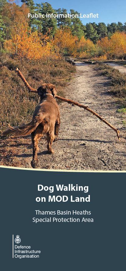 Dogs on MOD Land leaflet cover image