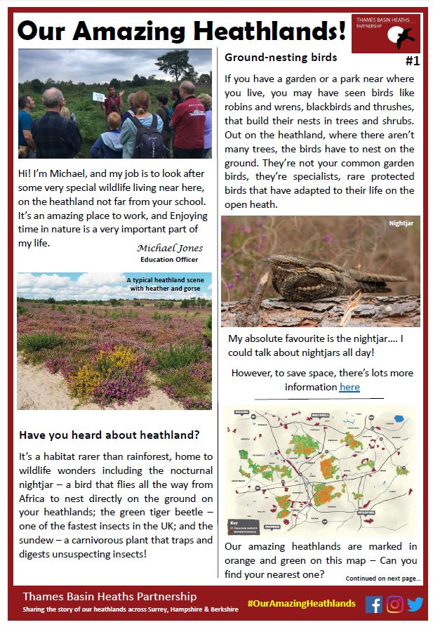Our Amazing Heathlands newsletter cover image