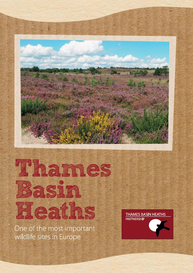 Thames Basin Heaths leaflet - One of the most important wildlife sites in Europe - leaflet cover image