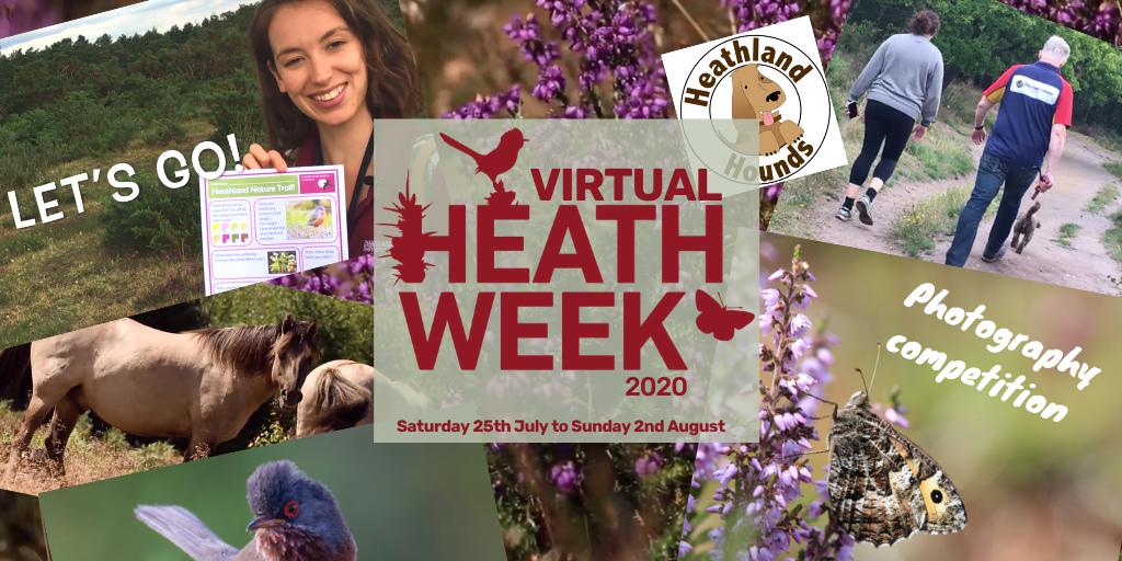 A heath week montage