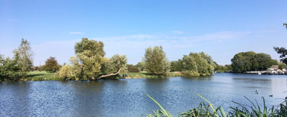 View of the River Thames from Chertsey Meads