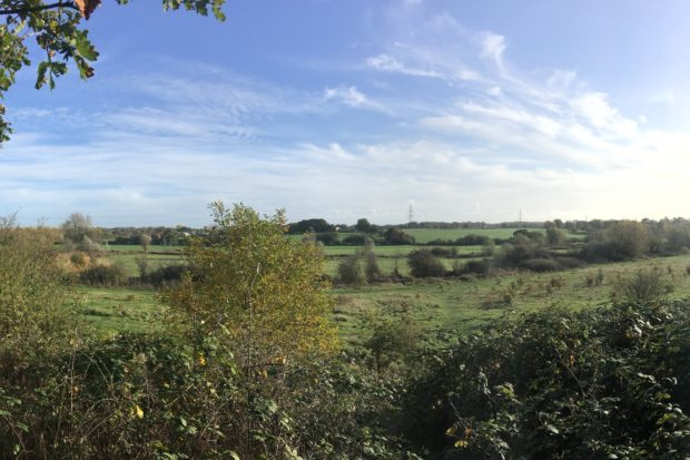 View from the knoll at Bassetts Mead Country Park