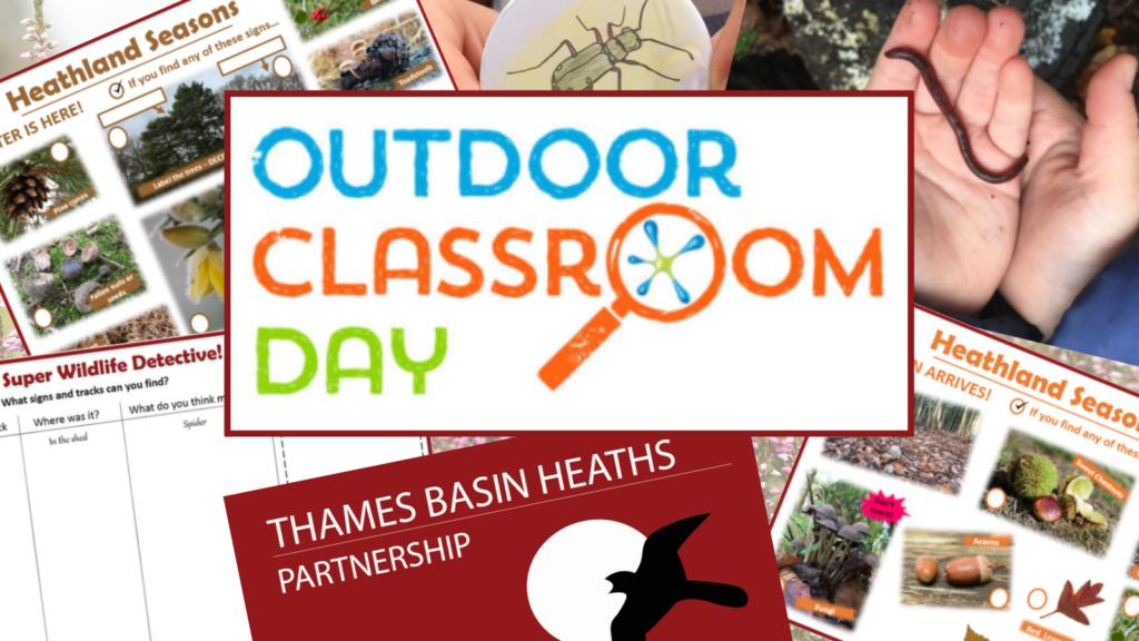 Outdoor Classroom Day Logo