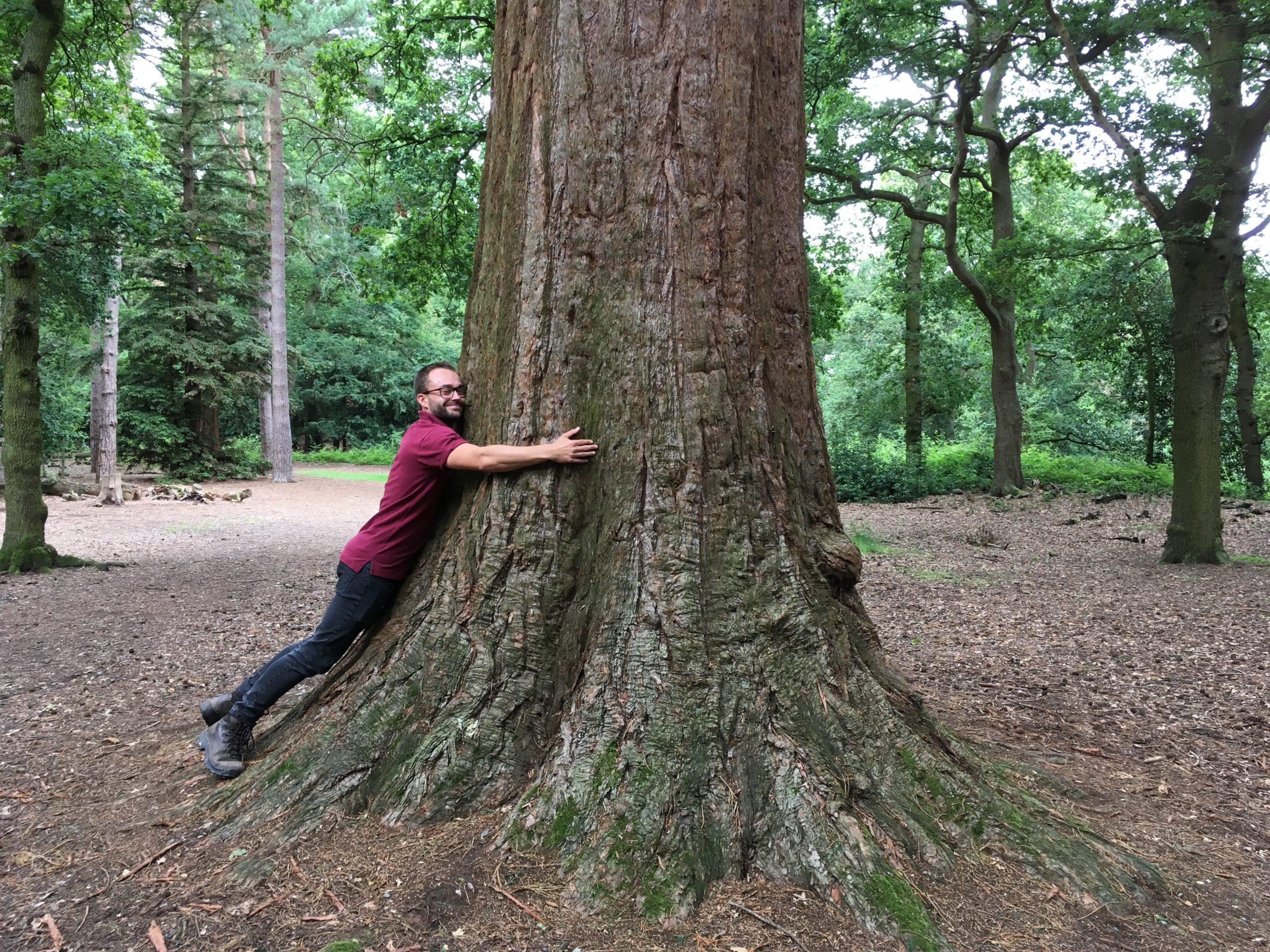 Photograph of Warden Jamie hugging a huge Wellingtonia tree
