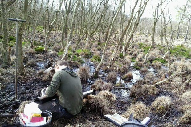 Photograph of Core sampling at Langshot Bog